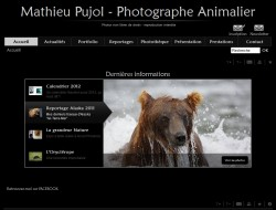 Mathieu PUJOL - Photographe animalier - 31550 CINTEGABELLE - www.mathieupujol.com